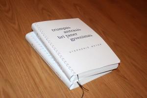 trumpasis-antrasis-bri-taner-gyvenimas-knygos-brailiu